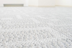 carpet_clean